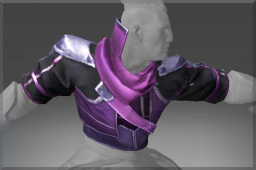 Vest of the Mage Abolisher