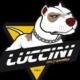 Team Luccini