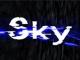 Sky.Gaming (Defunct)