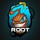ROOT Gaming DotA2