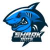 Shark Boys