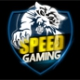 Speed Gaming.cn